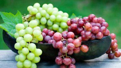 انگور کھائیں اور جلد کو جھلسنے سے بچائیں